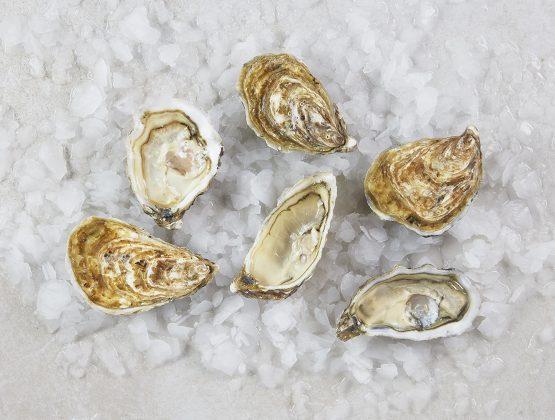 6 huîtres Utah Beach