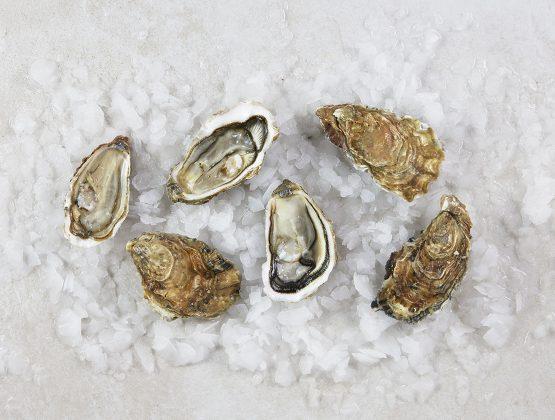 6 huîtres Fine de Claire