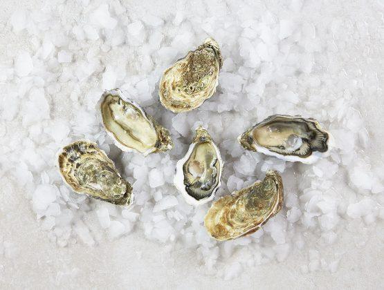 6 huîtres Gillardeau